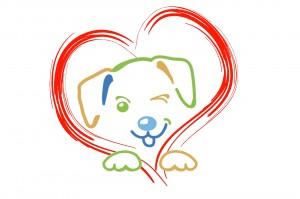 Parcour Freilaufgelände Hundeschule Einzeltraining