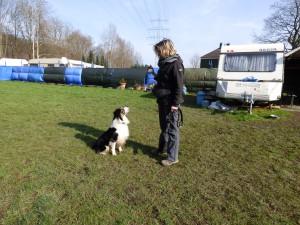 Einzeltraining statt Hundeschule:Hund und Frauchen beim Einzeltraining